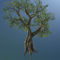 unity树模型资源包Fantasy Tree Pack