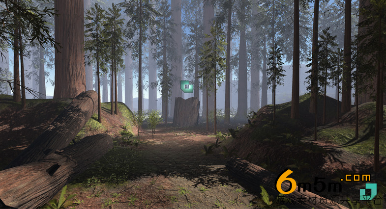 unity红衫树林资源包RedWood Forest Pack 1.1